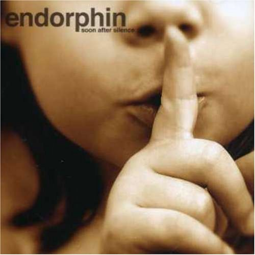 (Electronic,Downtempo) Endorphin - Soon After Silence - 2007, FLAC (tracks+.cue), lossless