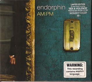 (Leftfield, Abstract, Dub) Endorphin - AM:PM - 2001, FLAC (tracks+.cue), lossless